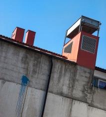 Foto: Turid Bjørnsen   Tittel: På taket   Sted: Gjelvangveita