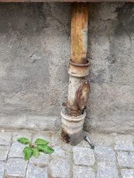 Foto: Christiane Wüllner | Tittel: Epoker | Fin blanding av grønn vekst/ugress med rusten opprinnelse i bakgrunnen og moderne verktøy som kontrast.