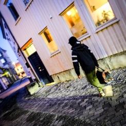 Foto: Morten Andersen   Tittel: På vei   Sted: Taraldsgårdsveita