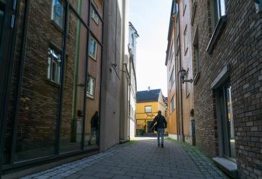 Foto: Nina Danielsen | Tittel: Storchveita | Sted: Storchveita