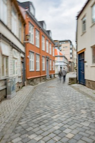 Foto: Jørn Engberg   Tittel: Vandrere i veita   Sted: Taraldsgårdsveita