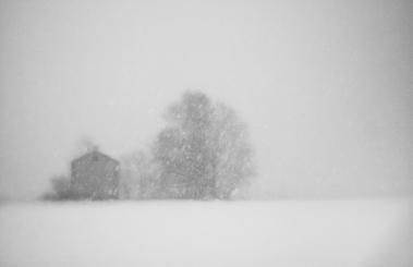 """Linh Hoang """"Heavy snowfall"""""""