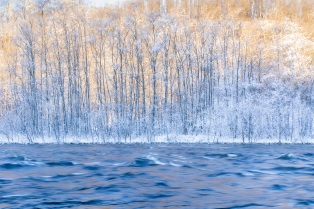 """Linh Hoang """"Beauty of nature"""""""