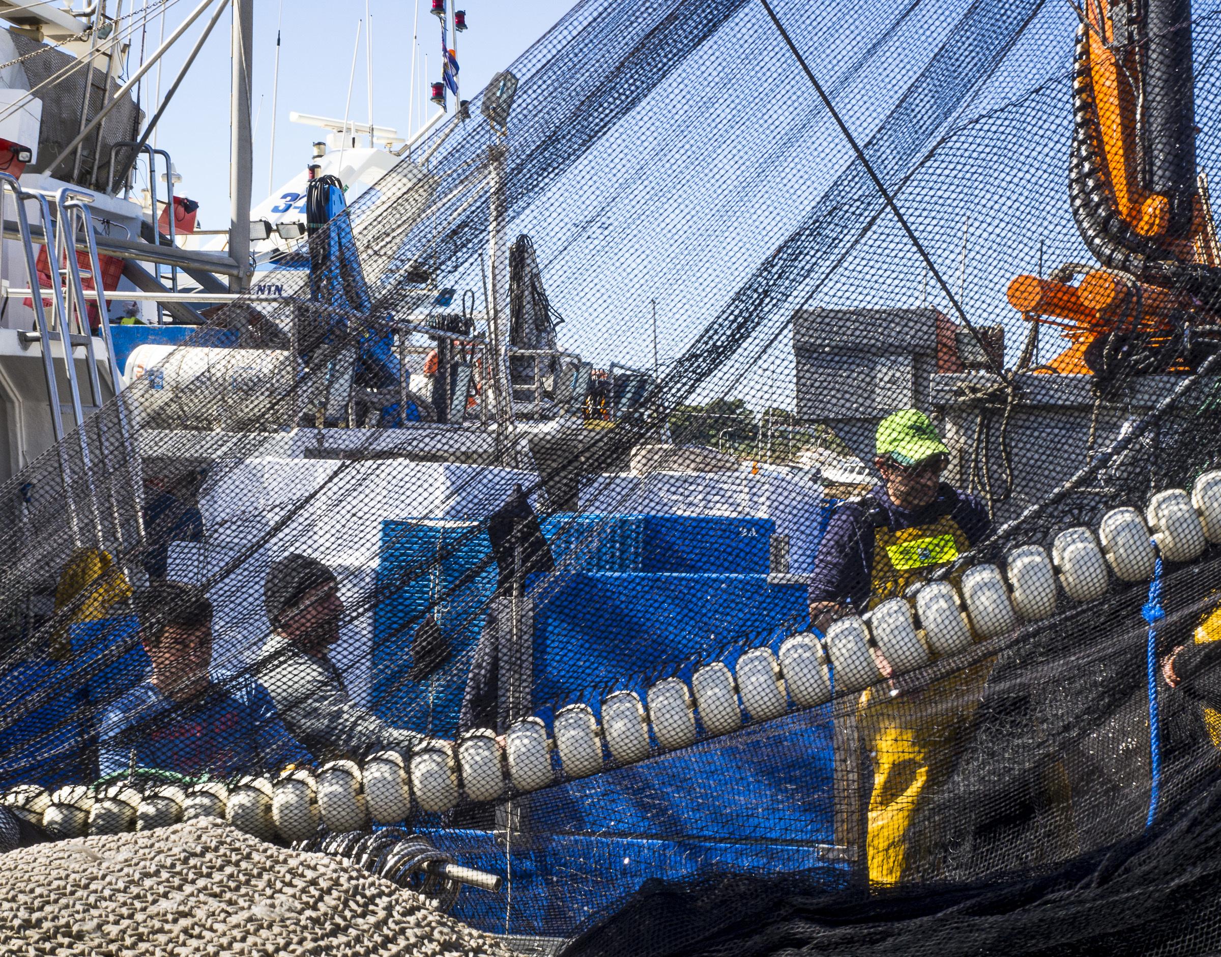 Liv Stadsøy, «Fiskere i Altea 1»